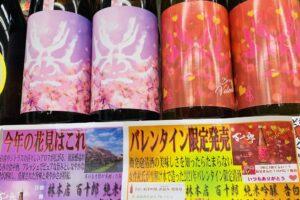 百十郎 告白 桜