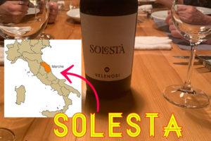 イタリアワイン マルケ