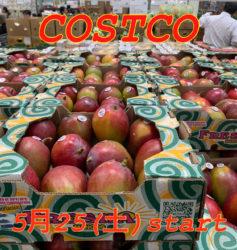 コストコ マンゴー